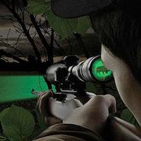 Where to hog hunt year-round