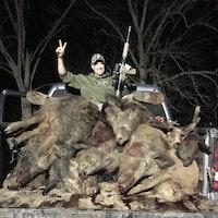 20 Hogs