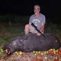 Hog hunting farms