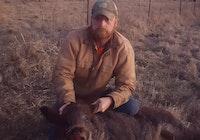 Big boar