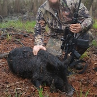 First time hog hunting!