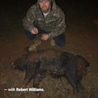 Robert's Hog