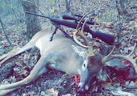 Big buck down!