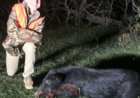 Corbin's Pig
