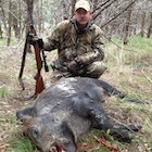 Spooked this boar up from his mid-morning nap in a cedar thicket while walking back to camp after my morning deer hunt on 12-27-14. Eye to eye combat at 7 yards and dropped him with a single shot to the head with my 25-06. Although I did put a 2nd round in him for good measure!